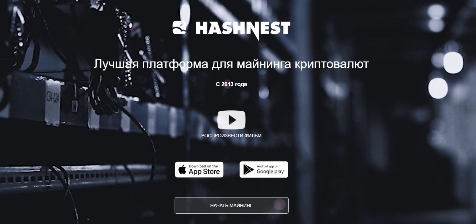 Скрин главной страницы сервиса облачного майнинга Hashnest