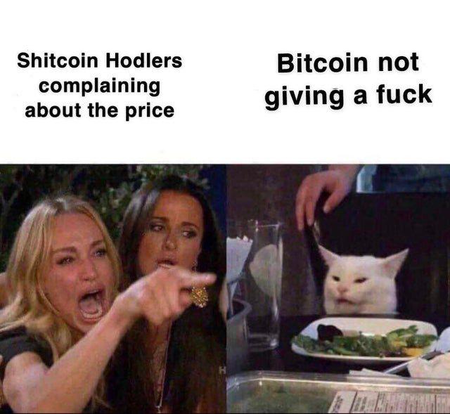 Криптовалюта: обзор мемов