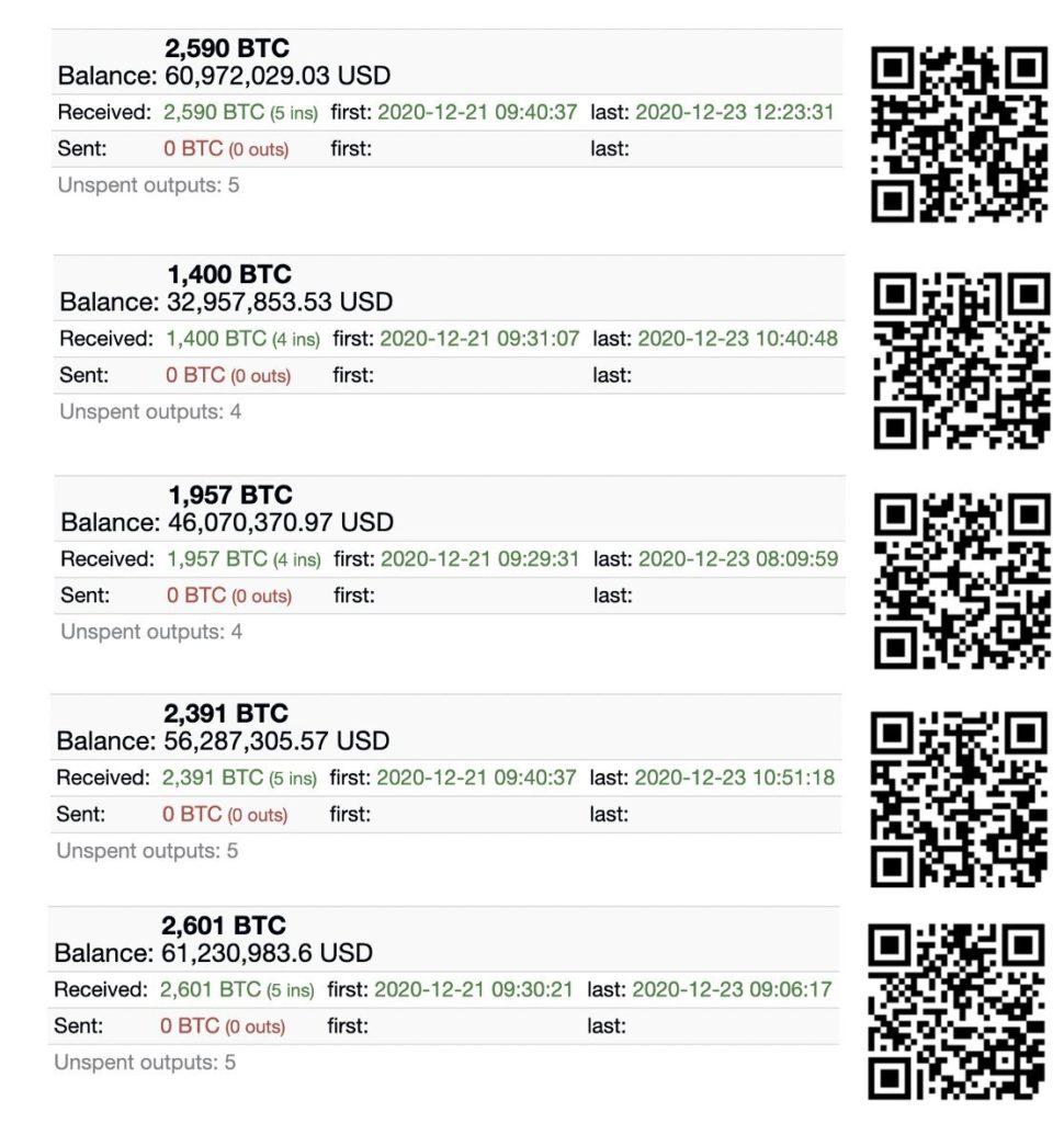 Bitcoin high-net cold wallets