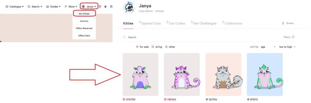 Скрин коллекции котят в личном кабинете CryptoKitties