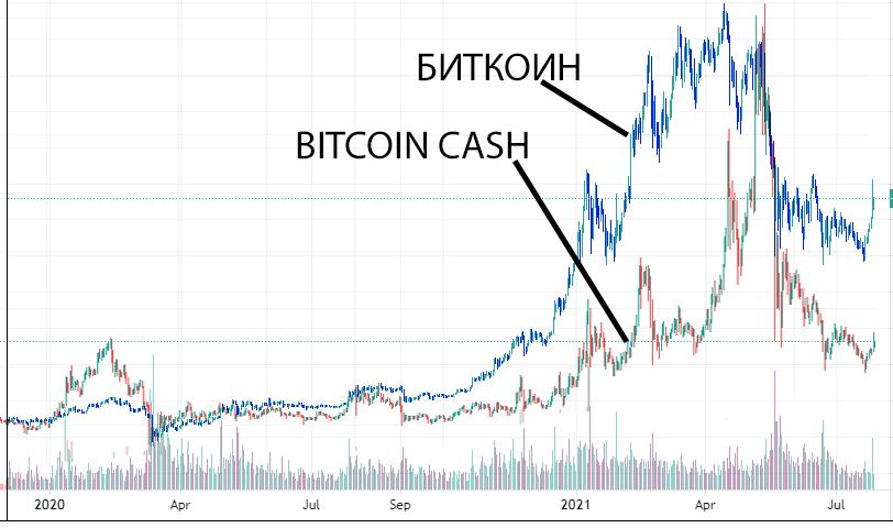 Сравнение графиков биткоина или Bitcoin Cash